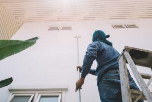 Carpet Shampoo cleaning sydney